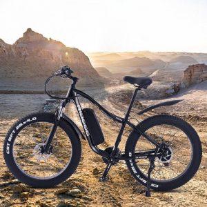 elektrische fiets met zelfstandige aandrijving